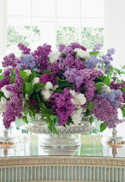 Beautiful lilacs..White, pale-lavender & deep-violet lilacs are arranged in a silver tureen... I love lilacs!!! By Carolyne Roehm