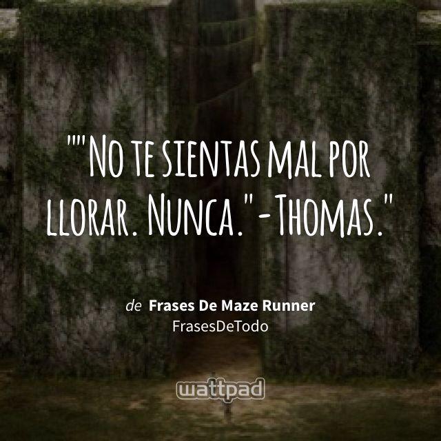 """""No te sientas mal por llorar. Nunca.""-Thomas."" - de Frases De Maze Runner (en Wattpad) https://www.wattpad.com/156250200?utm_source=ios&utm_medium=pinterest&utm_content=share_quote&%26wp_page=quote&wp_uname=krystal611&wp_originator=xhQti86VQ%2Fc2Hwui7O4grntGgriLbMmndRr%2BjyF2sJ0RPQZ%2BZnbLGdAL9rV3GcEfBvRG3AFAq0iW8IwgjA34J40ANrH3AvY54osb5I7H63Yl%2BLpuzNZAhgy6ZNxnW7ss #quote #wattpad"