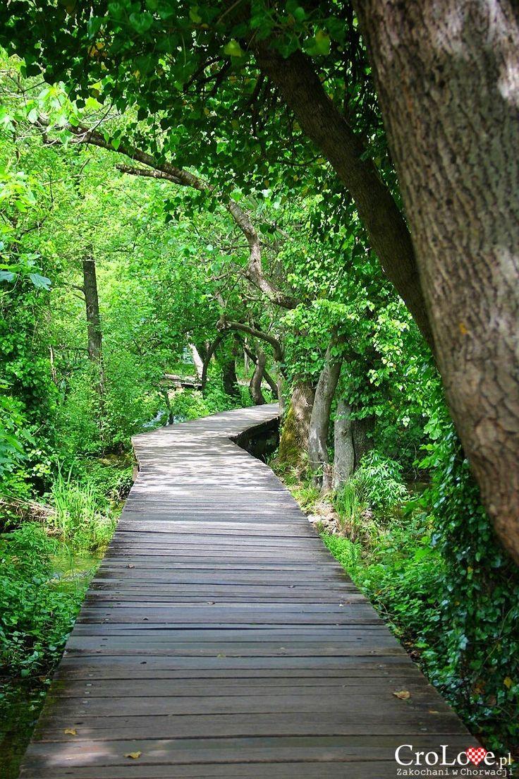 Malowniczo położone ścieżki w Parku Narodowym Krka | CroLove.pl |