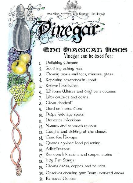 Vinegar and it's magical properties ❤