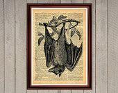 Hanging bat animal nature vampire print Rustic decor Cabin Vintage Retro poster Dictionary page Home interior Wall 0003