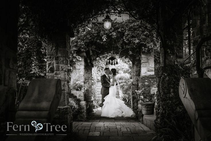 Moody Shot taken at Shepstone Gardens, Johannesburg. Talented Fern Tree Wedding Photography.