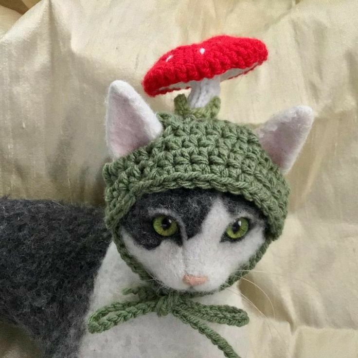 Pin By Kel On Projects N Things Cute Crochet Cats With Hats Crochet Cat
