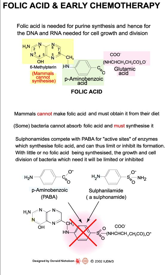 175 best Biochemistry images on Pinterest | Pathways, Charts and ...
