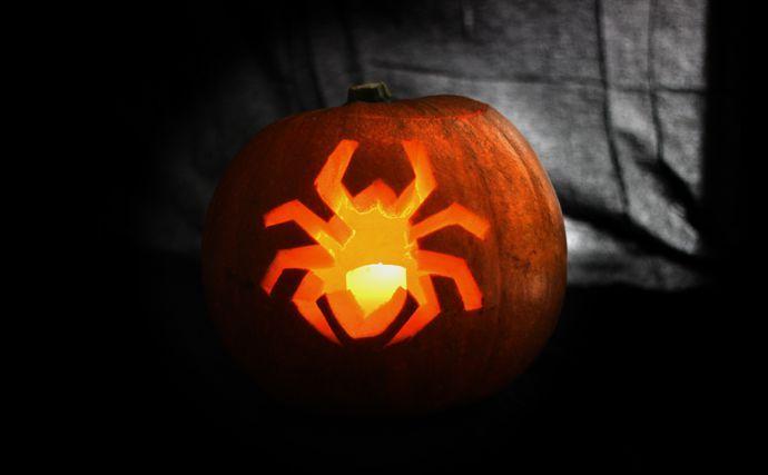 16+ Halloween pumpkin designs spider inspirations