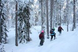 #Snowshoe Hike in #Nuuksio