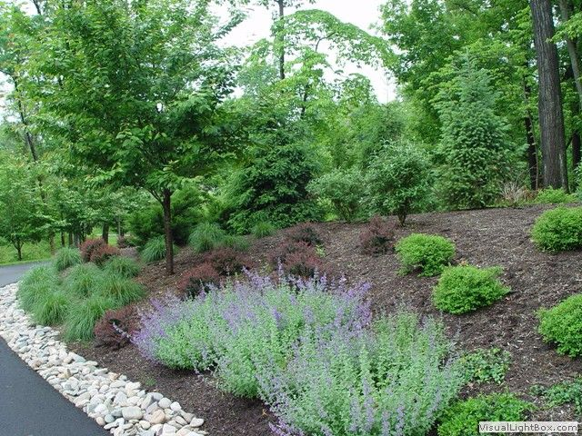 Landscaping a large area with a slope new jersey for Sloped driveway options