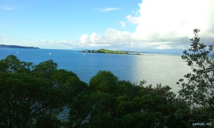 view of Browns Island from Achilles Point, Auckland, New Zealand (by LaNich)