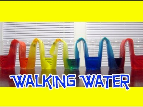 "Learn how to make coloured water ""walk"" from one cup to another in this EASY KIDS SCIENCE EXPERIMENT."