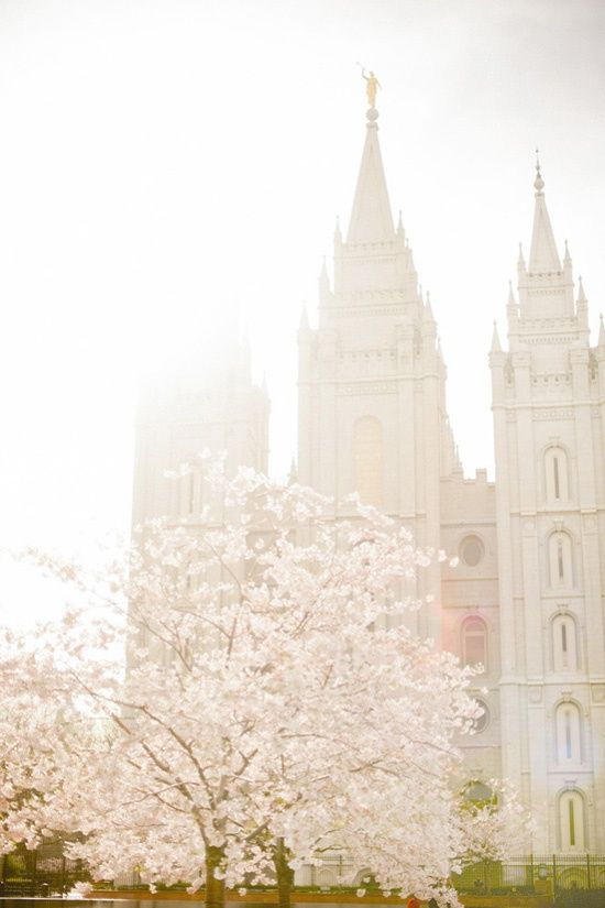 I would love this photo of the SLC temple in our bedroom.