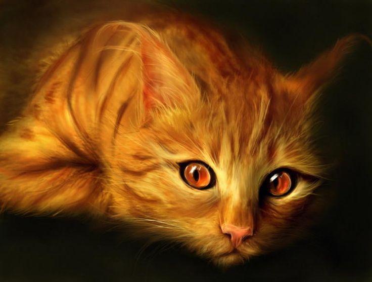 Orange cat paintings. cypherx - Dragon
