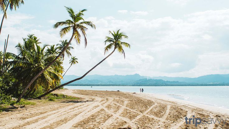 These Travel Inspired Zoom Backgrounds Will Spice Up Your Next Meeting Travel Inspired Baldwin Beach San Francisco De Macoris