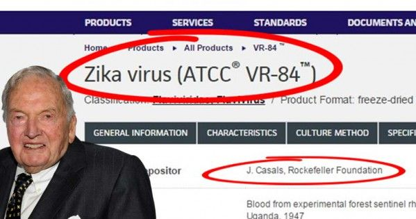 Rockefeller University Claims Their New Research Shows Zika Goes to your BRAIN…