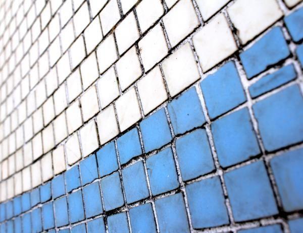 Cómo quitar el moho de la ducha. La ducha es la zona del baño más afectada por la humedad debido al agua que queda estancada y a los productos de higiene personal como jabones o aceites que utilizamos diariamente. Por ello y para evi...