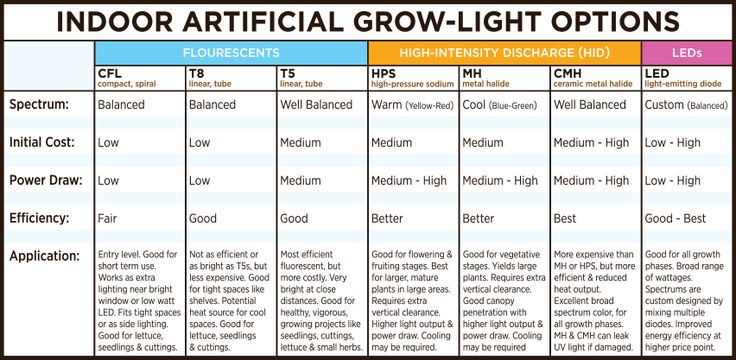 When it comes to artificial lighting, not all lights perform equally. There is a broad range of variance in light spectrums. Prices will vary greatly. Some lights are more efficient than others. So what type of grow light is best for your needs?