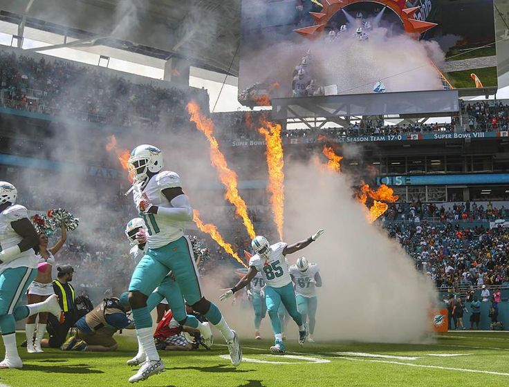 Steelers vs. Dolphins:     October 16, 2016  -  30-15, Dolphins  -      Miami Dolphins during the start of their game against the Pittsburgh Steelers during their NFL game Sunday October 15, 2016 at Hard Rock Stadium in Miami Gardens. (Bill Ingram / The Palm Beach Post)