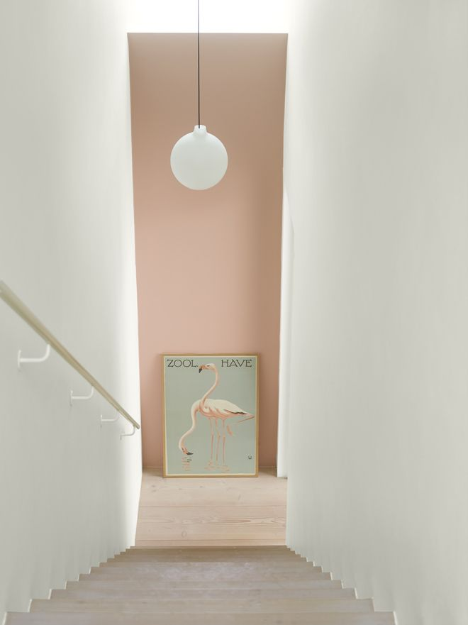 Vad underbart med ett färgstarkt välkomnande! LADY Pure Color 2992 Delightful Pink.