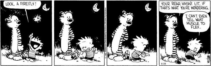 Calvin and Hobbes by Bill Watterson for Jun 28, 2017   Read Comic Strips at GoComics.com