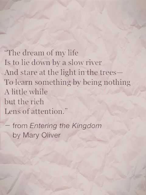 The dream of my life is to lie down by a slow river and stare at the light in the trees—to learn something by being nothing a little while but the rich lens of attention. —Mary Oliver ..*