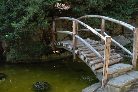 Rustic bridge. A variety of plans here: http://www.freewoodworkingplan.com/index.php?cat=420