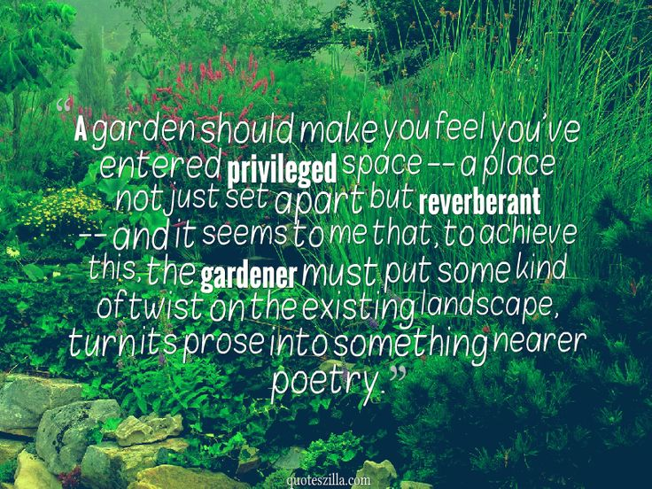 17 Best Images About Garden Sayings U0026 Signs On Pinterest   Gardens Garden Quotes And Garden Signs