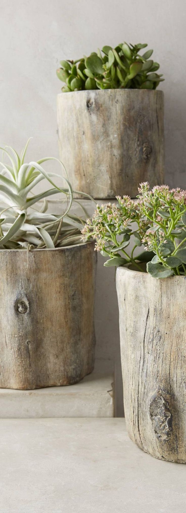 Personal: These tree trunk planters are much more sustainable than regular vases and planters. They are great home decor and put material that would have been wasted to good use.