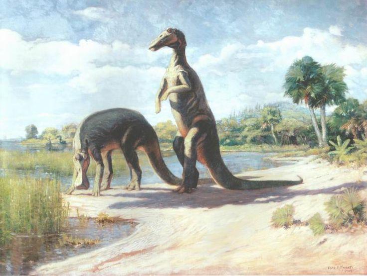 "Anatotitan_C.Knight.jpg (749×565) - Basé sur les squelettes montés au AMNH (réfèré ""Trachodon mirabilis"" ou ""Hadrosaurus mirabilis""). Ces deux spécimens (AMNH 5370 et AMNH 588) sont maintenant appelés Edmontosaurus annectens (aka Claosaurus annectens, Thespesius saskatchewanensis, Anatosaurus copei). Dinosauria, Ornithischia, Ornithopoda, Hadrosauridae, Saurolophinae. Auteur : Charles Robert Knight, 1905."
