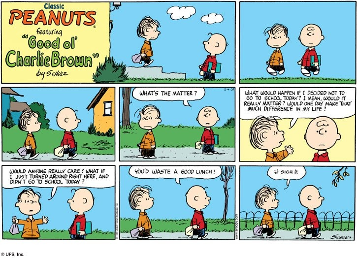Charlie Brown #peanuts #comics #humor
