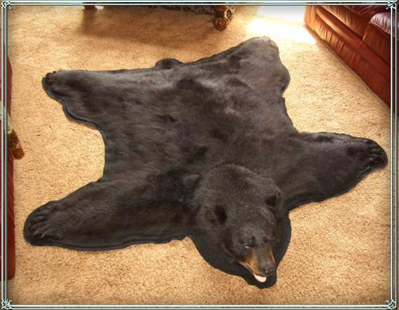 22 Best Bear Skin Rugs Images On Pinterest Bear Bears