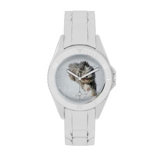 Run, jump, and dance with this sporty and fun watch. Bearded collie Luka running in the snow.