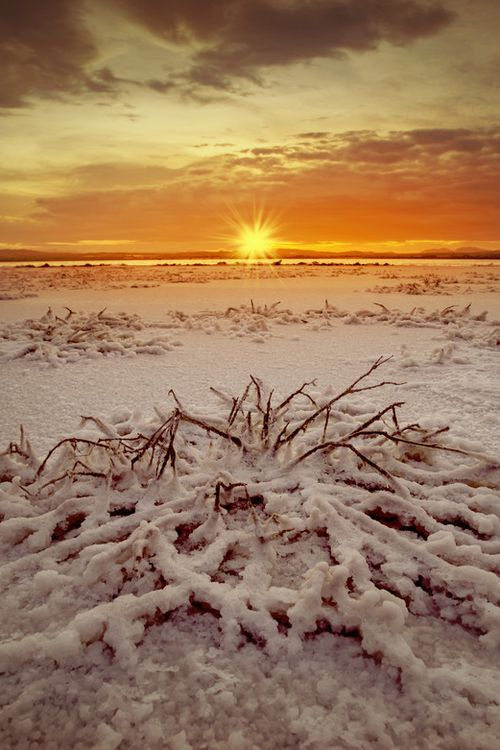 Sunrise at a salt lake in Torrevieja, Costa Blanca,