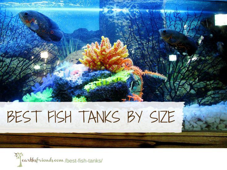 25 Best Ideas About Fish Tank Sizes On Pinterest