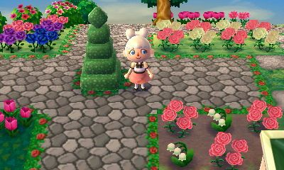 acnl hacks how to move the town hall