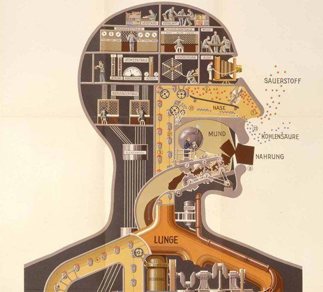 """Inspirado pelo poster """"Man as Industrial Palace"""" de 1927 de Fritz Kanh, o designer Henning M. Lederer fez uma animação que mostra como nosso corpo trabalha comparando com uma indústria."""