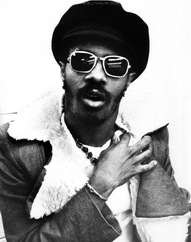 heaven help the roses if the bombs begin to fall • stevie wonder