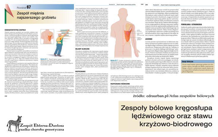 EDS, Ehlers-Danlos Syndrom, Zespół Ehlersa-Danlosa; stowarzyszenia chorych na EDS;