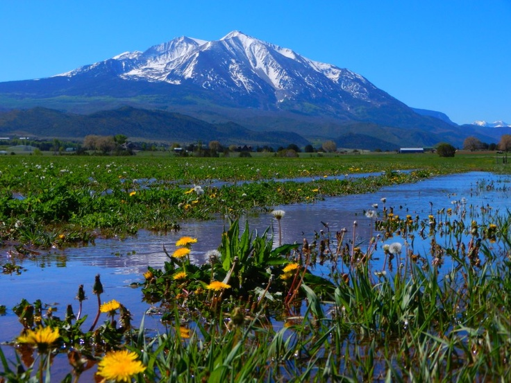 Mount Sopris Carbondale, CO Lived in Carbondale in 1981. I fell in love with Colorado.