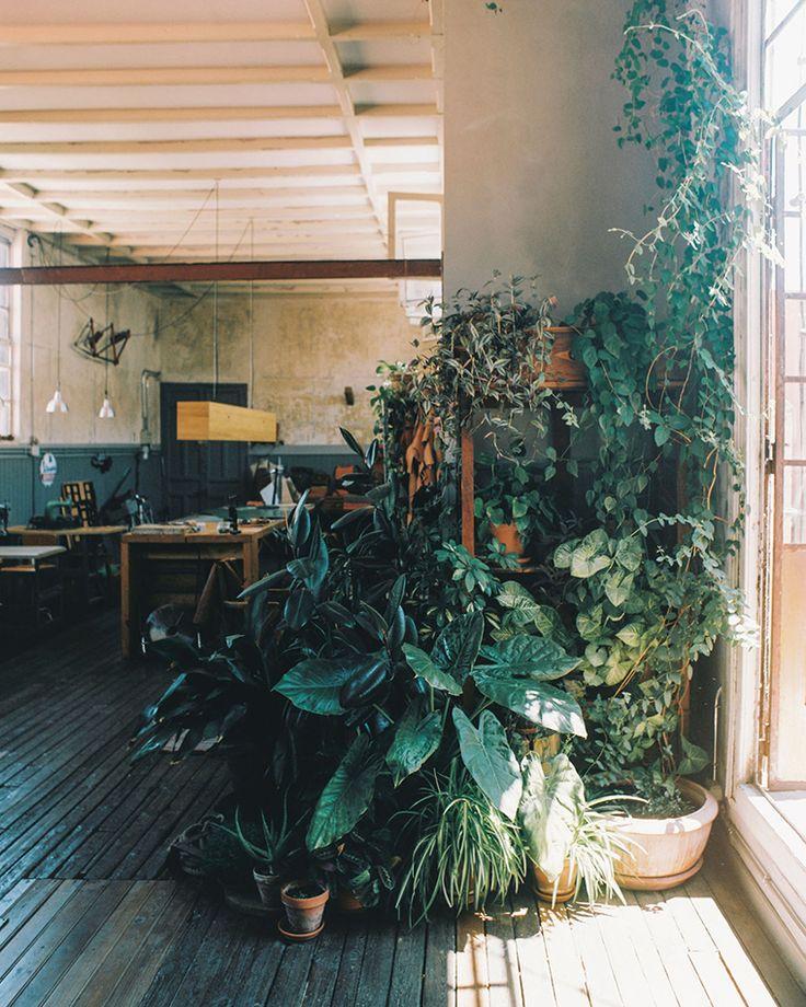 Les 56 meilleures images à propos de Terra Flor Shelter sur - terre contre mur maison