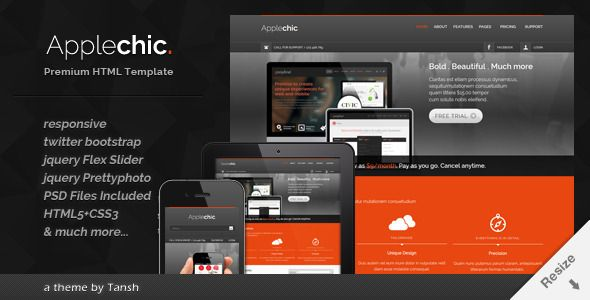 Applechic Responsive Software HTML Template - ThemeForest Item for Sale