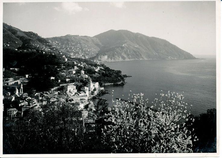 Panorama del borgo di Camogli. (Photo: Cresta, 1938) #Camogli #Riviera #Liguria #anniTrenta #viaggi #vacanza #holiday #the1930s #journey