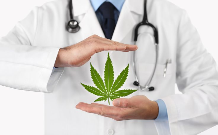Cannabis Physicians Will Hold Conference In Orlando October 6th-8th