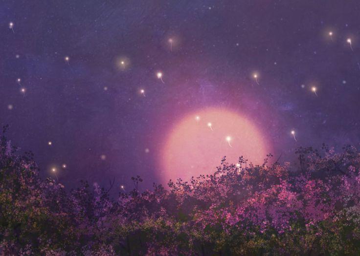 달빛이 세상을  환하게 밝혀주는 밤
