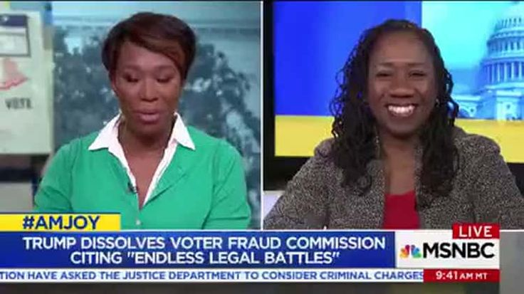 LDF's Sherrilyn Ifill Discusses Trump's Now-Disbanded Voter Suppression Commission on MSNBC