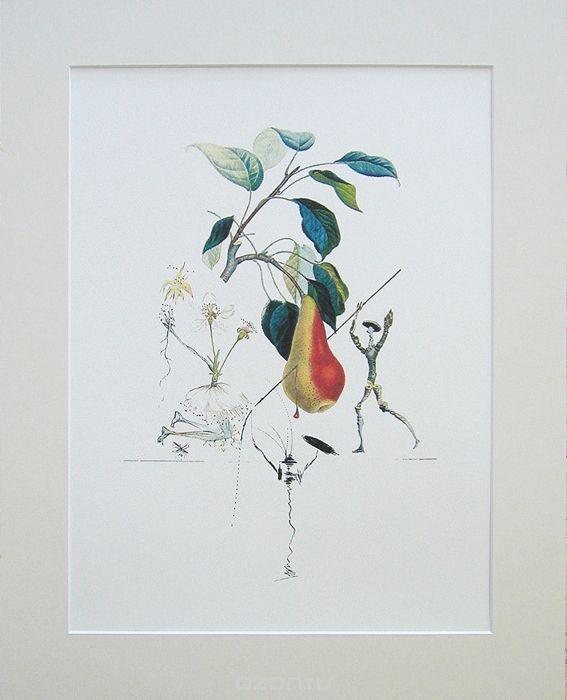 Сальвадор Дали. Груша Дон Кихот, 1979. Цветная литография. Серия FlorDali Les Fruits | 13 500 р.