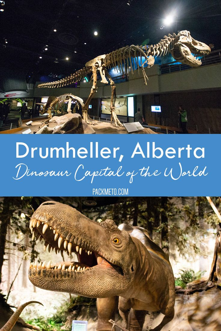 With over 330M users on Badoo, you will find someone in Drumheller.