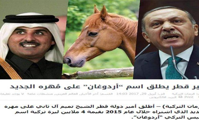 """Emir of Qatar, names his horse """"Erdogan"""" BlackHouse, May 02 – Emir of Qatar chosen the name of """"Erdogan"""" for his new horse that he bought in 2015 for the price of 4 million Turkish lira. According to ISNA, quoting from RT, Tamim bin Hamad Al Thani, Emir of Qatar and the owner of the International Center for equestrian... http://blackhouse.info/?p=8339"""
