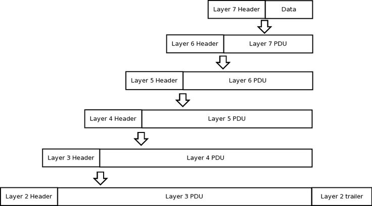 As discussed earlier, the OSI model was created to promote communication between…