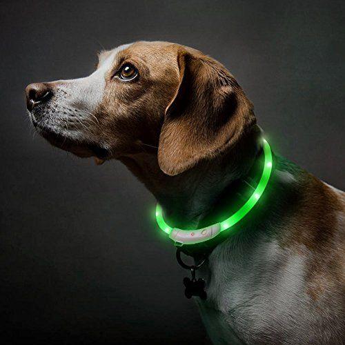 Hundehalsband Led Halsband Hunde Leuchtendes Halsbande