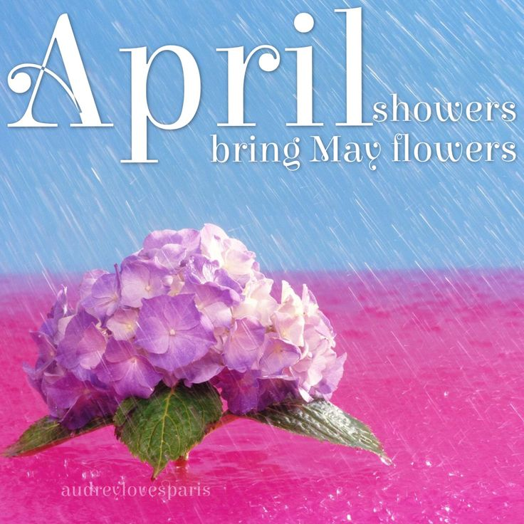 10 Best images about ~ HELLO APRIL ~ on Pinterest  Pastel, A bunny and May f...