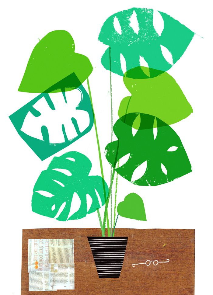 Rob Hodgson, still life with Monstera plant, newspaper and imaginary glasses.